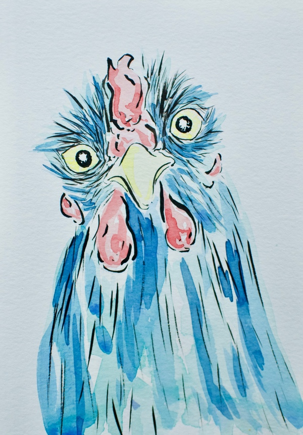 Chicken Painting Ink and Watercolor