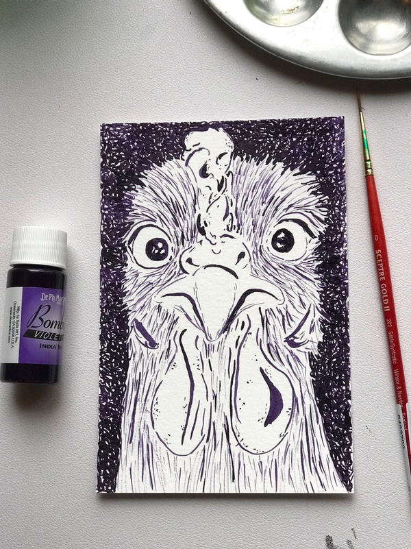 Chicken Pen and Ink
